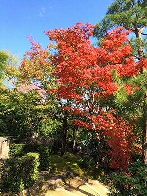 kyoto2014_16