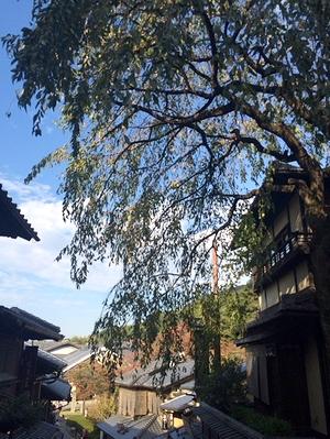 kyoto2014_4