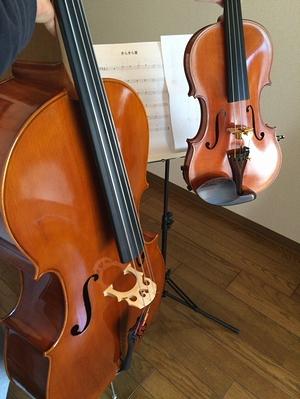 cello_kira1