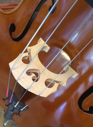 cello_kira2