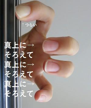 cellosorotte3