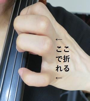 cellosorotte4