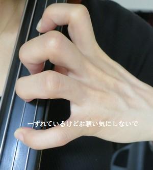 cellosorotte5