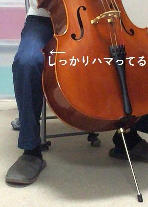 cello201507023