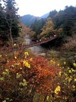 秋川渓谷@東京都あきる野市 でお散歩ウォーキング