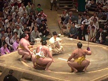 sumokansen01