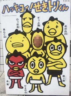 sumokansen14