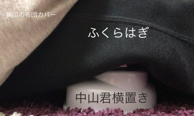 nakayamashiki_fukurahagi5